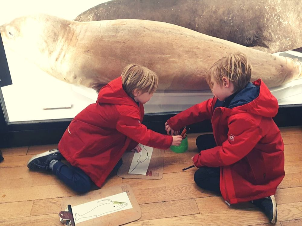 Colouring for Children at the Tring Museum