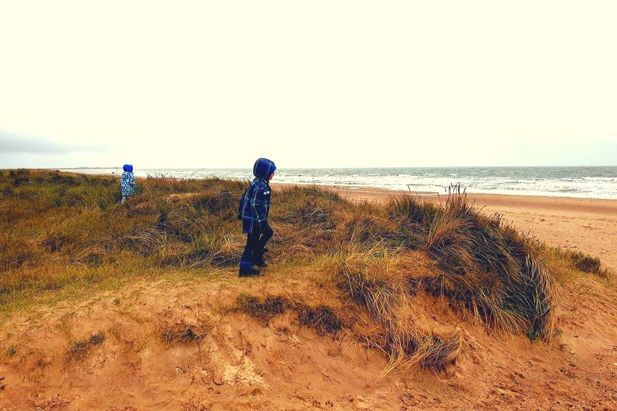 Sand dunes at Brancaster Beach in North Norfolk