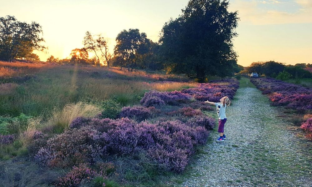 Family walks around Dunwich Heath