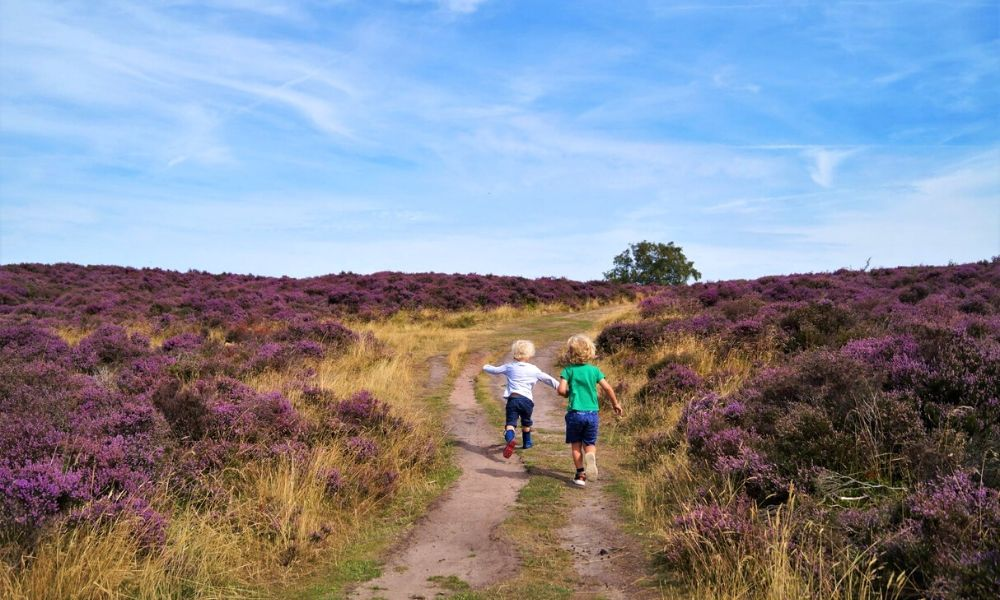 Stanton Moor family walk in the Peak District