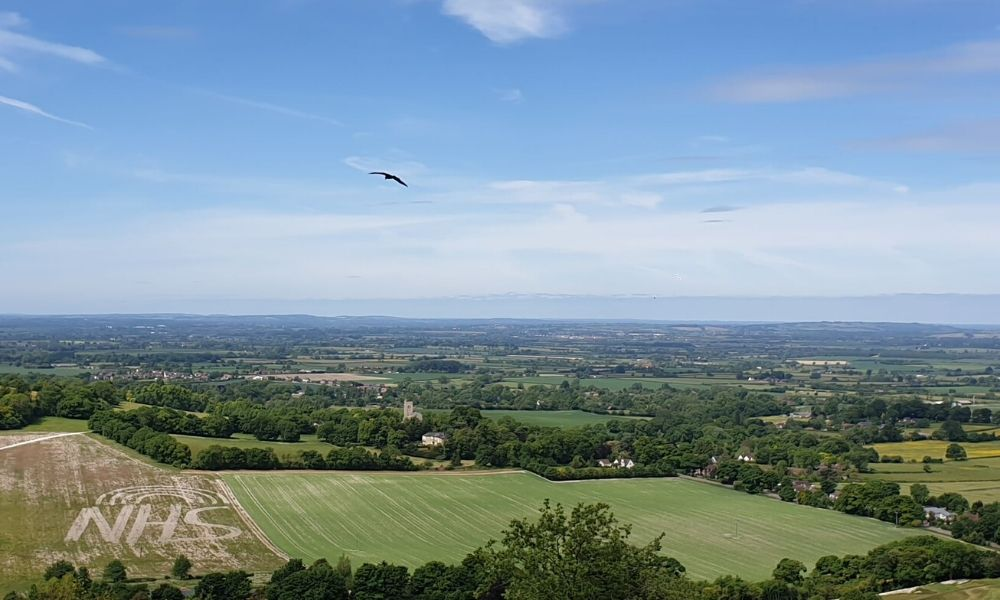 View from the top of Coombe Hill